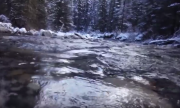 40 mile Creek - a picture from the video
