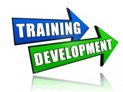 "two signs saying ""training"" and ""development"""