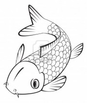Drawing of a Koi Fish