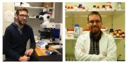 montage of 2 students doing parkinsons research