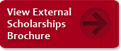 External-Scholarship-Button